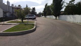 Photo 21: 9367 172 Street in Edmonton: Zone 20 Carriage for sale : MLS®# E4233789