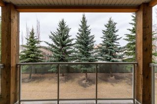 Photo 28: 214 278 SUDER GREENS Drive in Edmonton: Zone 58 Condo for sale : MLS®# E4241668