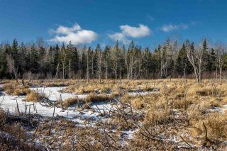 Photo 3: Lot Greenfield Road in Greenfield: 404-Kings County Vacant Land for sale (Annapolis Valley)  : MLS®# 202025611