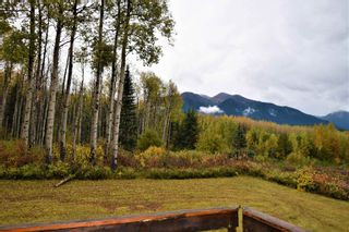 Photo 35: 3560 HOBENSHIELD Road: Kitwanga House for sale (Smithers And Area (Zone 54))  : MLS®# R2620973