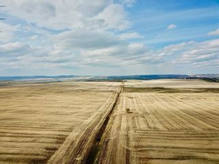 Photo 4: 1/2 Mile N of 434 Ave on 32 ST W: Rural Foothills County Land for sale : MLS®# C4243509