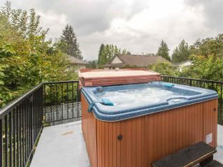 Photo 9: 23189 124A Avenue in Maple Ridge: East Central House for sale : MLS®# R2107120