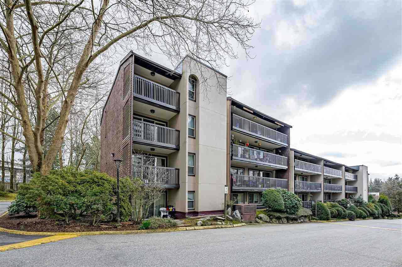 Main Photo: 501 9847 MANCHESTER Drive in Burnaby: Cariboo Condo for sale (Burnaby North)  : MLS®# R2558218