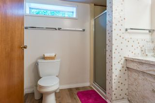 Photo 46: 4241 Buddington Rd in : CV Courtenay South House for sale (Comox Valley)  : MLS®# 857163