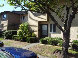 Photo 2: 21 11160 Kingsgrove Avenue in Cedar Grove Estates: Home for sale : MLS®#  V1026818