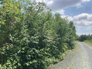 Photo 7: Lot 7 Highway 7 in Goldenville: 303-Guysborough County Vacant Land for sale (Highland Region)  : MLS®# 202015433