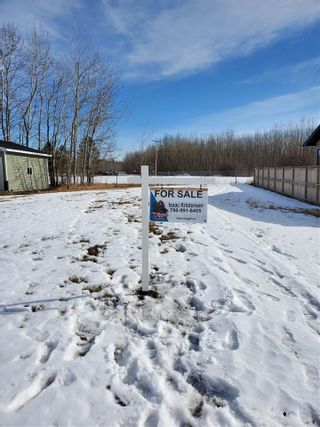 Photo 1: 4411 43 Avenue: Rural Lac Ste. Anne County Rural Land/Vacant Lot for sale : MLS®# E4231379