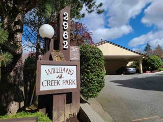 """Photo 1: 24 2962 NELSON Place in Abbotsford: Central Abbotsford Townhouse for sale in """"Willband Creek Park"""" : MLS®# R2566695"""