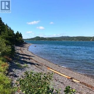 Photo 6: 6-8 Murphy's Road in Harbour Main: Vacant Land for sale : MLS®# 1228182