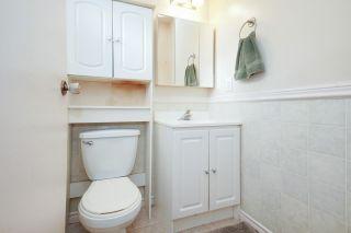 Photo 29: 21260 COOK Avenue in Maple Ridge: Southwest Maple Ridge House for sale : MLS®# R2530636