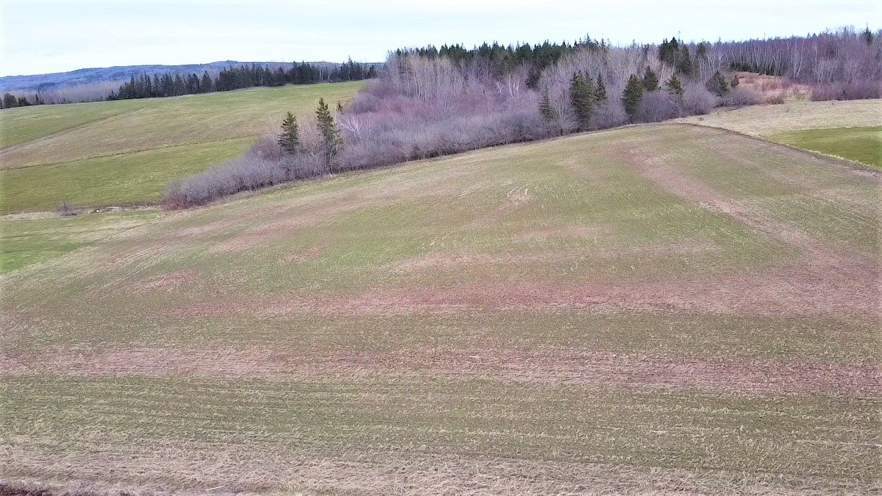 Main Photo: Lot Mountville Road in Mountville: 108-Rural Pictou County Vacant Land for sale (Northern Region)  : MLS®# 202109746
