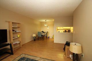 Photo 6: 303 21 DOVER Point(e) SE in Calgary: Dover Condo for sale : MLS®# C4118767
