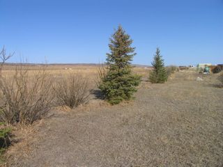 Photo 8: 1 Pine Coulee Ranch in Rural Willow Creek No. 26, M.D. of: Rural Willow Creek M.D. Residential Land for sale : MLS®# A1090094
