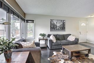 Photo 3: 110 Abalone Crescent NE in Calgary: Abbeydale Detached for sale : MLS®# A1127524