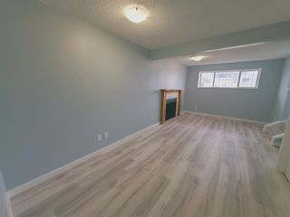Photo 40: 23 Erin Meadows Court SE in Calgary: Erin Woods Detached for sale : MLS®# A1124454