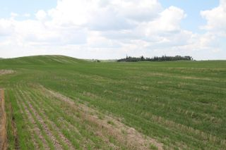 Photo 7: Twp Rd 592 Rg Rd 112: Rural St. Paul County Rural Land/Vacant Lot for sale : MLS®# E4263379