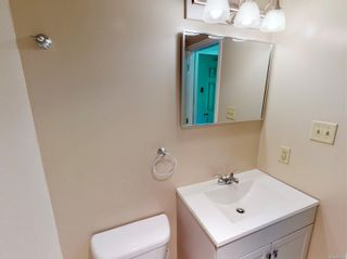 Photo 14: 103 3225 Alder St in : SE Quadra Condo for sale (Saanich East)  : MLS®# 877393