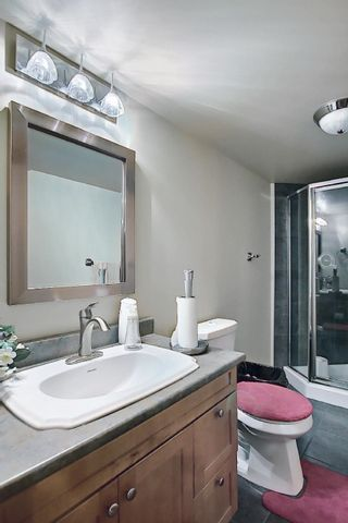 Photo 44: 6405 SANDIN Crescent in Edmonton: Zone 14 House for sale : MLS®# E4245872