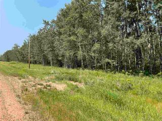 Photo 10: RGE RD 223 Twp Rd 594: Rural Thorhild County Rural Land/Vacant Lot for sale : MLS®# E4256609