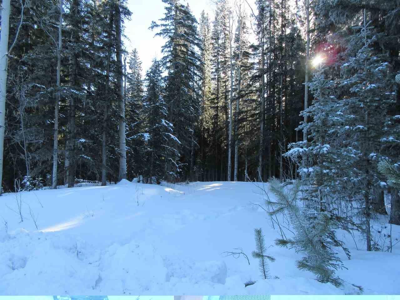 Main Photo: 7592 LUDLOM ROAD: Deka Lake / Sulphurous / Hathaway Lakes Land for sale (100 Mile House (Zone 10))  : MLS®# R2532799