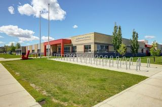 Photo 24: 195 CRANFORD Crescent SE in Calgary: Cranston Detached for sale : MLS®# A1031321
