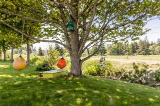 Photo 29: 1652 Ben Phinney Road in Margaretsville: 400-Annapolis County Residential for sale (Annapolis Valley)  : MLS®# 202116326