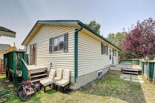 Photo 38: 180 Castledale Way NE in Calgary: Castleridge Detached for sale : MLS®# A1135509