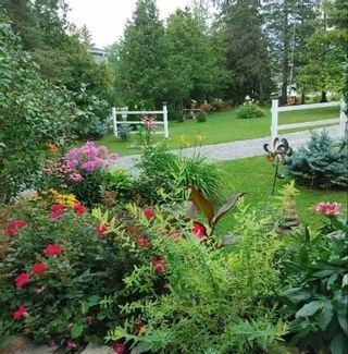 Photo 29: 220 Mcguire Beach Road in Kawartha Lakes: Rural Carden House (Bungalow) for sale : MLS®# X5338564