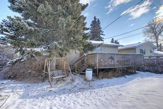 Photo 33: 67 Penmeadows Place SE in Calgary: Penbrooke Meadows Detached for sale : MLS®# A1066670