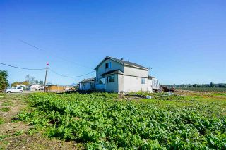 Photo 4: 3386 176 STREET in Cloverdale: Agriculture for sale : MLS®# C8034496