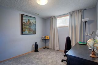 Photo 27: 223 Springborough Way SW in Calgary: Springbank Hill Detached for sale : MLS®# A1114099