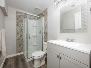 Photo 26: 14 Hillcrest Street SW: Airdrie Detached for sale : MLS®# A1140179