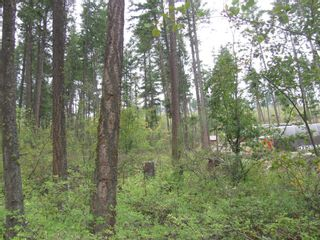 Photo 13: 7908 Alpine Road, in Vernon: Vacant Land for sale : MLS®# 10240275