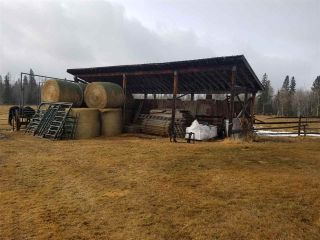 Photo 17: 57518 RGE RD 233: Rural Sturgeon County House for sale : MLS®# E4235337