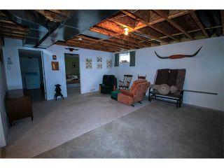Photo 17: 2 117 BOW RIDGE Drive: Cochrane House for sale : MLS®# C4003118