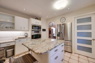 Photo 11: 256 BURTON Road in Edmonton: Zone 14 House for sale : MLS®# E4262280