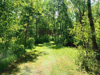 Photo 5: 51315 RR262 Road: Rural Parkland County Rural Land/Vacant Lot for sale : MLS®# E4235816