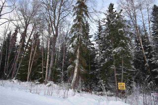"""Photo 15: 3 3000 DAHLIE Road in Smithers: Smithers - Rural Land for sale in """"Mountain Gateway Estates"""" (Smithers And Area (Zone 54))  : MLS®# R2280165"""