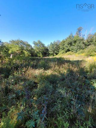 Photo 3: Lot Lighthouse Road in Bay View: 401-Digby County Vacant Land for sale (Annapolis Valley)  : MLS®# 202119924