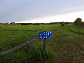 Main Photo: 290081 1016 Drive E: Rural Foothills County Land for sale : MLS®# A1061382