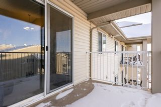 Photo 32: 509 7511 171 Street in Edmonton: Zone 20 Condo for sale : MLS®# E4229398