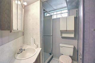 Photo 38: 9444 74 Street in Edmonton: Zone 18 House for sale : MLS®# E4240246