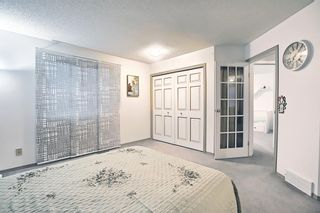 Photo 29: 144 Martinwood Court NE in Calgary: Martindale Detached for sale : MLS®# A1126396