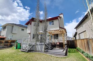 Photo 43: 131 Springmere Drive: Chestermere Detached for sale : MLS®# A1109738