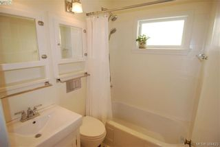 Photo 12: 4012 N Raymond St in VICTORIA: SW Glanford House for sale (Saanich West)  : MLS®# 772693