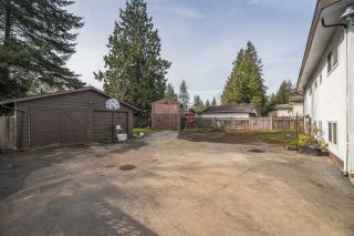 Photo 19: 20450 43A Avenue in Langley: Brookswood Langley House for sale : MLS®# R2553051