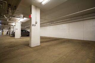 Photo 16:  in Edmonton: Pleasantview Condo for sale
