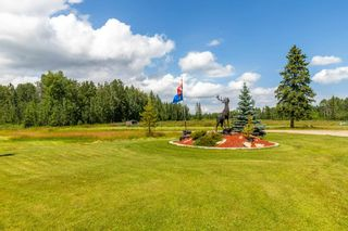 Photo 4: 50206A RR 91: Rural Brazeau County House for sale : MLS®# E4236017