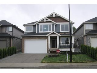 Photo 1: 10458 245TH Street in Maple Ridge: Albion House for sale : MLS®# V1078579