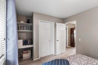 Photo 21: 296 Mt. Brewster Circle SE in Calgary: McKenzie Lake Detached for sale : MLS®# A1118914